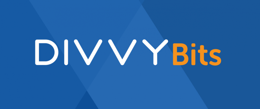 Divvy Bits: Favorite 80's Band & Next Social Publishing Integration